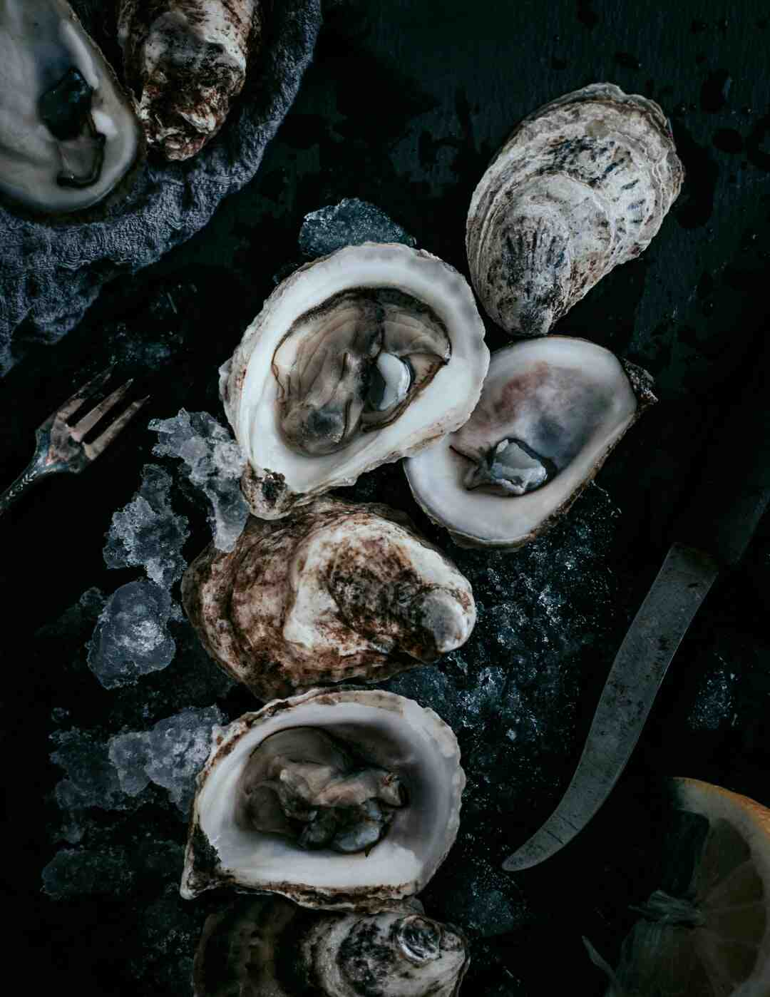 Are frozen oysters any good?